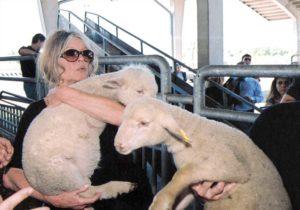 Brigitte Bardot lance un cri d'alerte pour les animaux