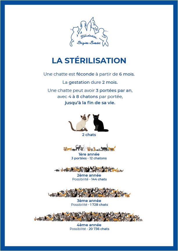 fondation brigitte bardot sterilisation chats