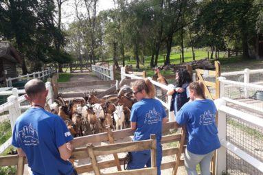 La FBB recueille 70 chèvres dans l'Allier