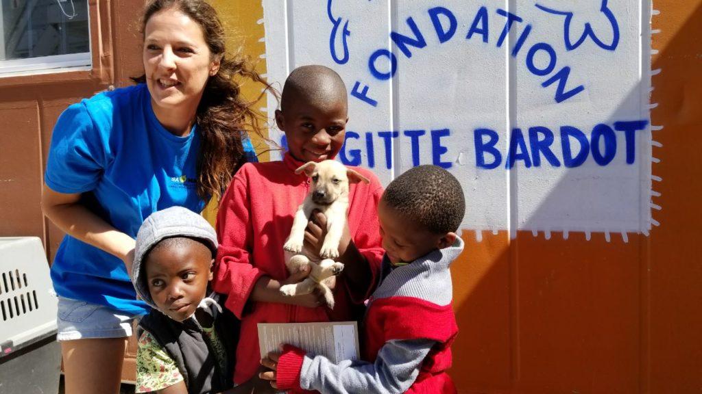 fondation brigitte bardot aides financement sterilisation chiens errants afrique du sud association samast