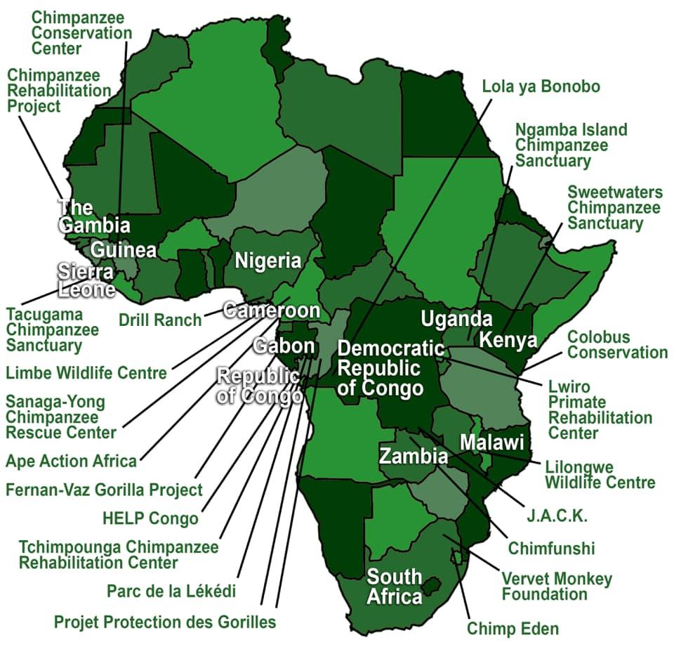 fbb aide internationale afrique pasa primates