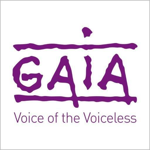 GAIA prix Brigitte Bardot combats animaux
