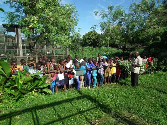 fondation bardot aide internationale afrique cameroun limbe wildlife center faune sauvage
