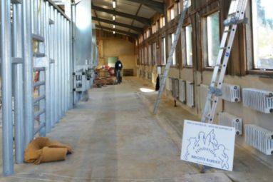 Le sanctuaire Elephant Haven ouvre ses portes en 2020 !
