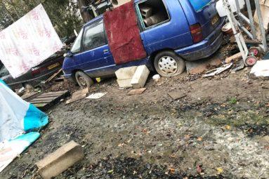 La FBB sauve deux chiens de sécurité maltraités en Ile-de-France