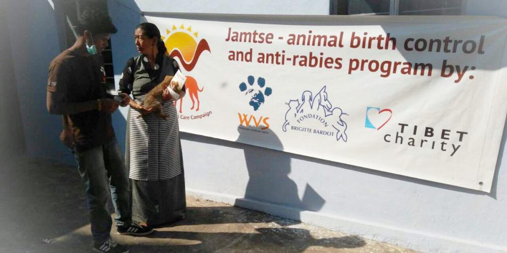 En Inde, le projet Jamtse a été mis en place par la FBB avec Worldwide Veterinary Service depuis 2015