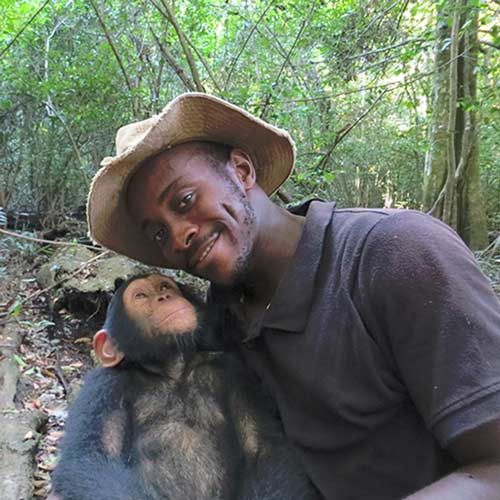 FBB aide internationale chimpanzés