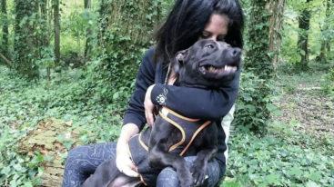 Retour sur l'affaire Elisa Pilarski, tuée en forêt par des morsures de chiens pendant une chasse à courre