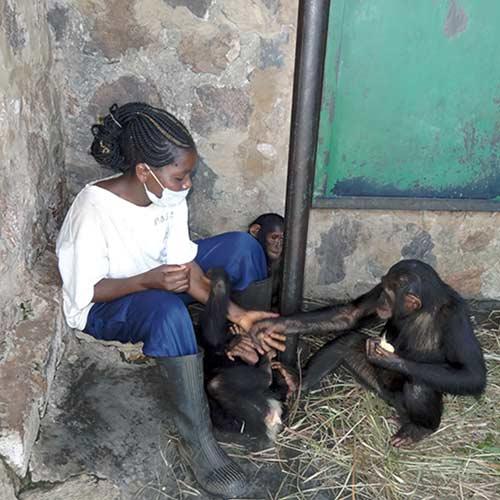 Fondation Brigitte Bardot Congo JACK