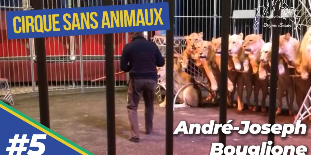 Le dressage dans le monde du cirque : André-Joseph Bouglione nous parle de cette maltraitance (5/9)
