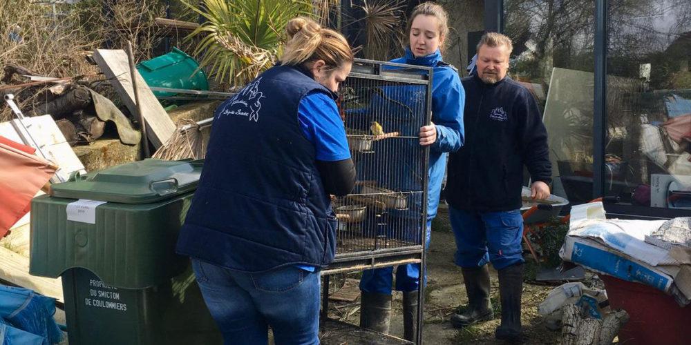 La FBB prend en charge des animaux en manque de soins sur un site insalubre de Seine-et-Marne