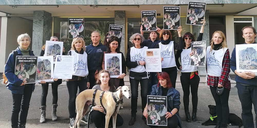 La FBB devant le consulat d'Espagne à Bayonne pour alerter sur le terrible sort des Galgos