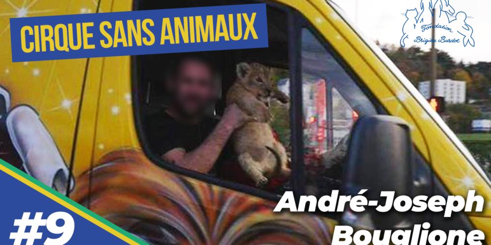Y a-t-il des animaux non déclarés dans les cirques ? La réponse d'André-Joseph Bouglione (9/9)