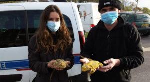 fondation brigitte bardot sauvetage serpents reptiles bayonne