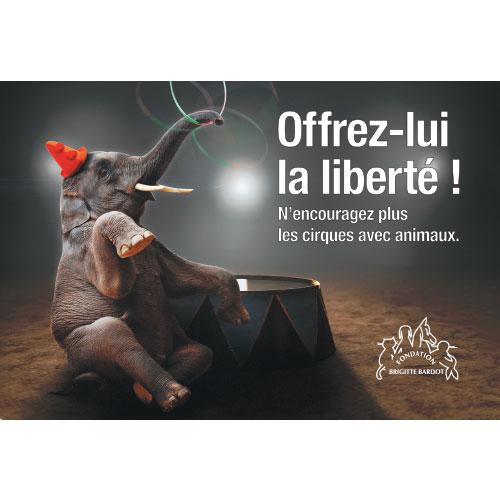 Fondation Brigitte Bardot offrez lui la liberté !