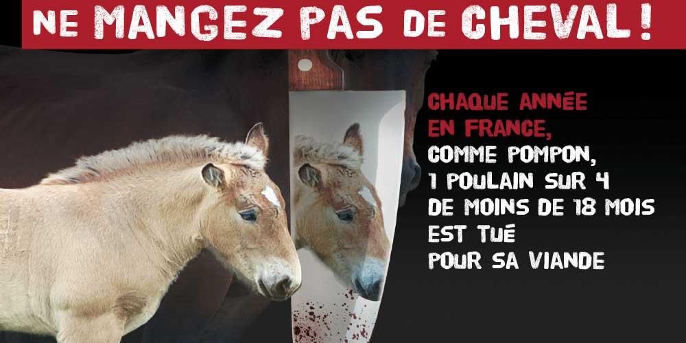 Fondation Brigitte Bardot ne mangez pas de cheval