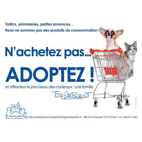 Fondation Brigitte Bardot adoption