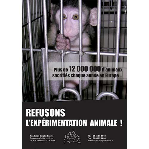 Fondation Brigitte Bardot expérimentation animale