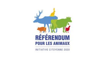 Participez au référendum pour les animaux !