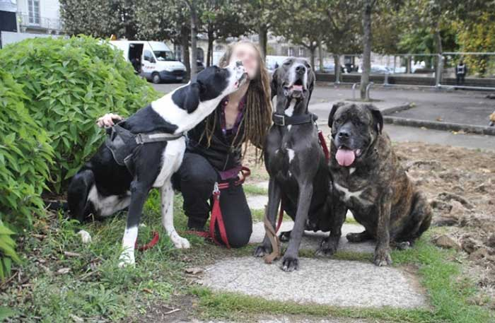 fondation brigitte bardot aide veterinaire sdf