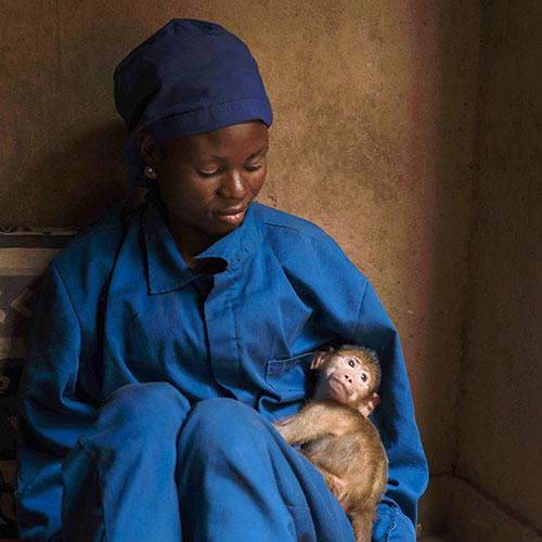 Fondation Brigitte Bardot aide internationale malawi