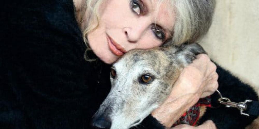 L'appel de Brigitte Bardot à Barbara Pompili