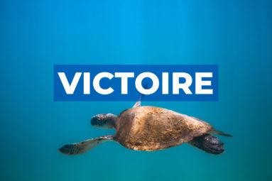 Victoire : Le Parlement européen vote pour la préservation de la biodiversité !