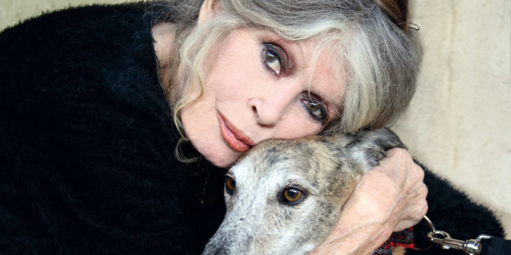 Lettre ouverte de Brigitte Bardot à Madame Orzechowski, préfète de l'Oise :