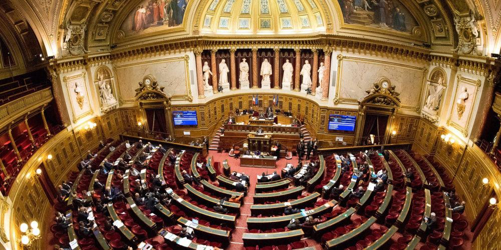 PROPOSITION DE LOI « ANIMAUX » : sans surprise, les sénateurs dénaturent le texte adopté à l'Assemblée nationale en janvier !