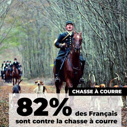 fondation brigitte bardot sondage ifop aout 2020 chasse a courre
