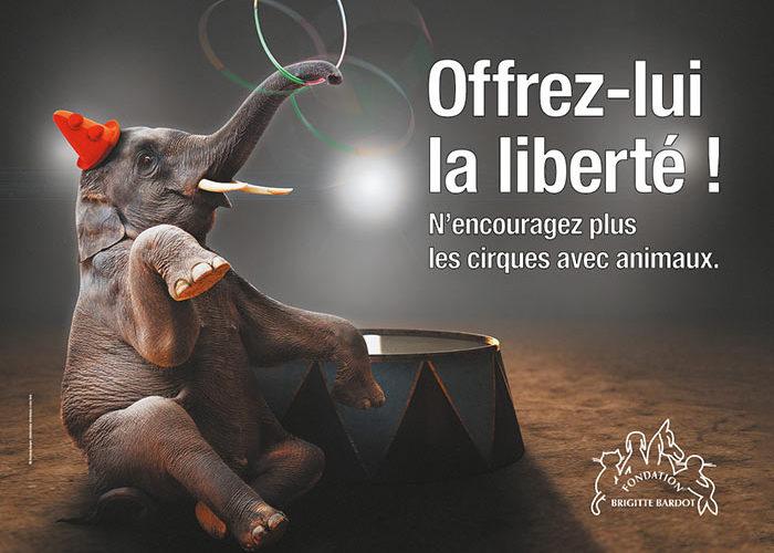 Fondation Brigitte Bardot campagne 2019 cirque sans animaux