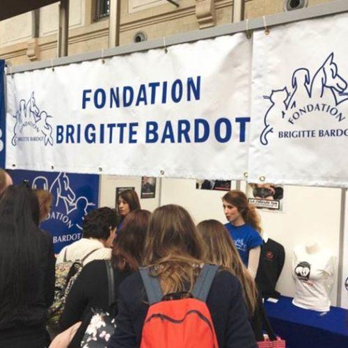 soutenir la fondation brigitte bardot devenir benevole delegue enqueteur
