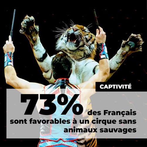 fondation brigitte bardot sondage ifop aout 2020 cirque sans animaux sauvages