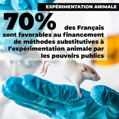 fondation brigitte bardot sondage ifop aout 2020 experimentation